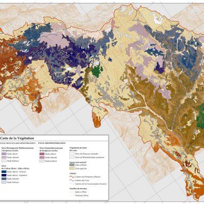 Map of Vegetation - 2008