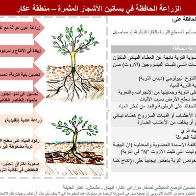 Brochure: الزراعة الحافظة في بساتين األشجار المثمرة – منطقة عكار.pdf