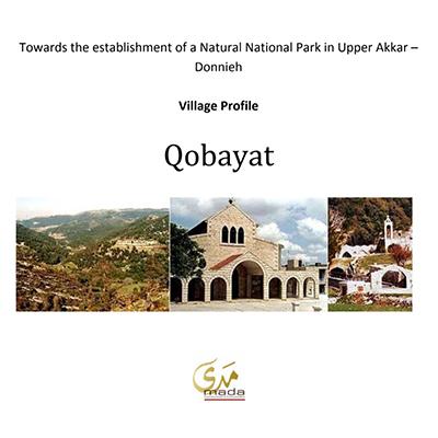Village Profile_ Qobayat - 2009