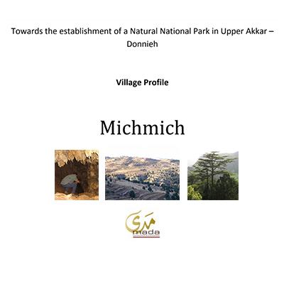 Village Profile_ Mishmish - 2009
